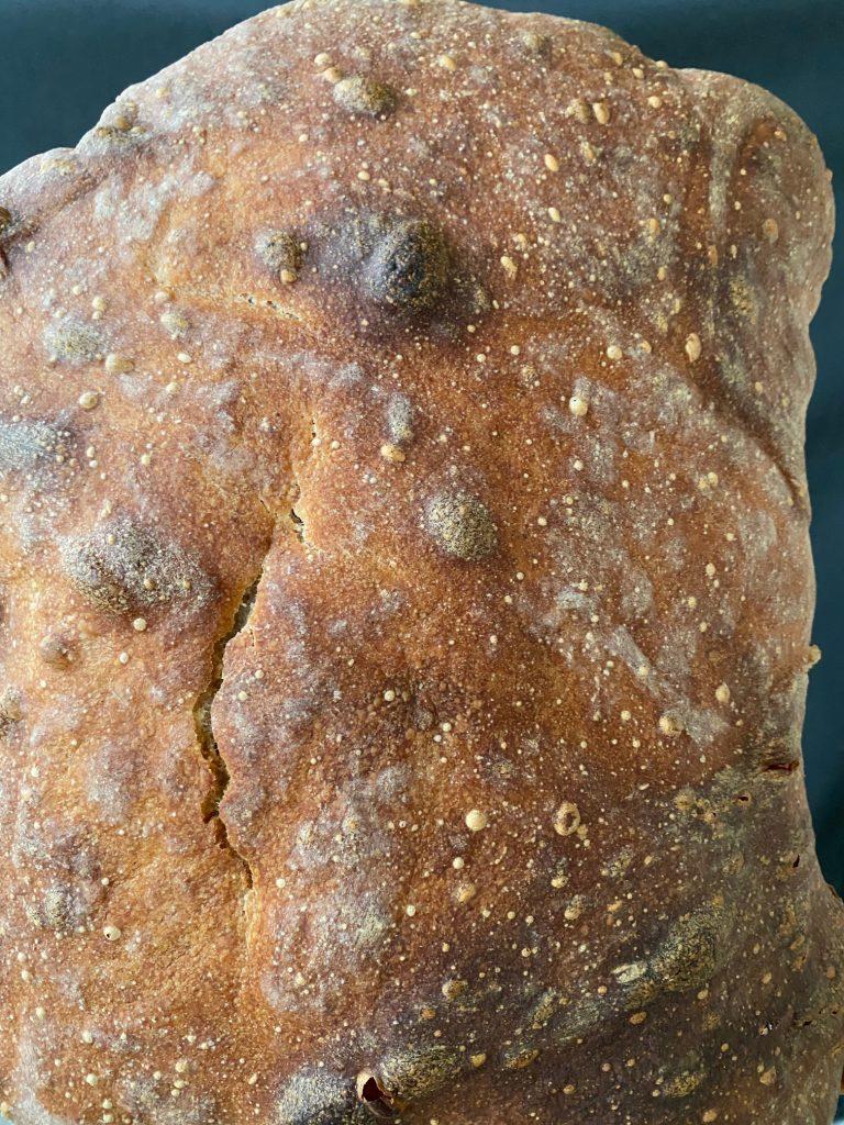 Verdens bedste koldhævede brød uden surdej