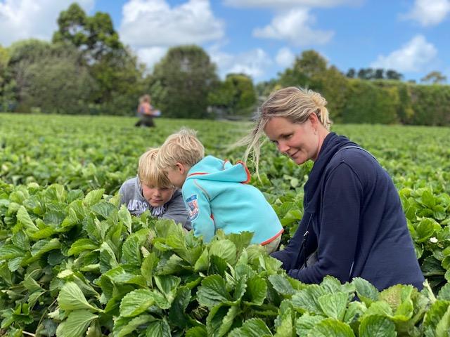 I New Zealand og Australien med børn
